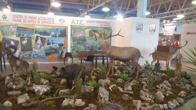 NO al Nature Show! NO all'uccisione di Animali innocenti!
